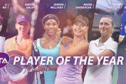 Finalistele anului 2014 tenis wta