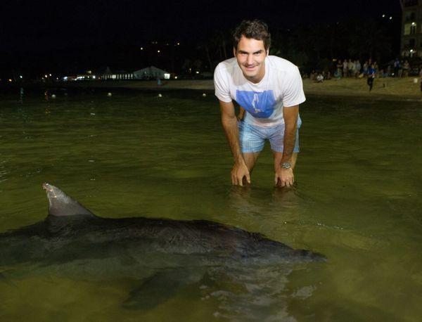 Roger Federer delfini brisbane delfinariu