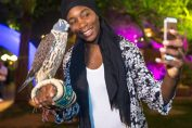 players party dubai venus williams