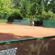 """. Se pare că Sorana Cîrstea, aflată actualmente pe locul 165 WTA, a renunțat la colaborarea cu argentinianul Juan Pablo Guzmán și s-a reprofilat tot pe """"piața"""" românească, optând să..."""