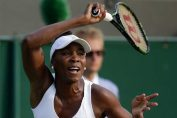 venus williams wimbledon