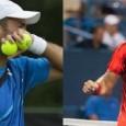 Cei doi reprezentanți ai României pe tabloul masculin de dublu de la Australian Open și-au aflat adversarii. În sferturile de finală am putea avea o confruntare între ei. Perechea Horia...