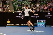 andy murray semifinala australian open