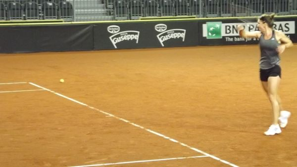 fed cup antrenament halep