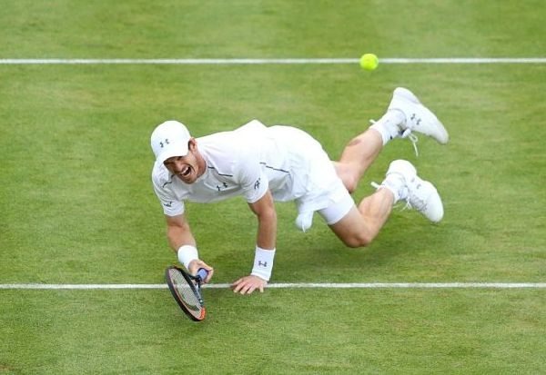 andy murray iarba cazatura queens