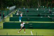 calificari wimbledon tenis terenuri