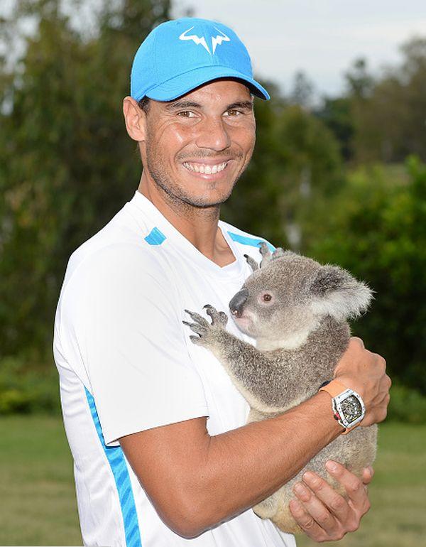 rafael nadal koala