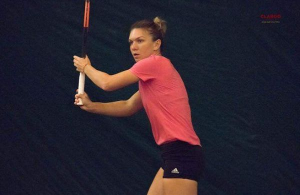 simona halep claboo media fed cup