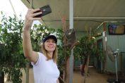 Simona Halep la Gradina zoologica din Sydney