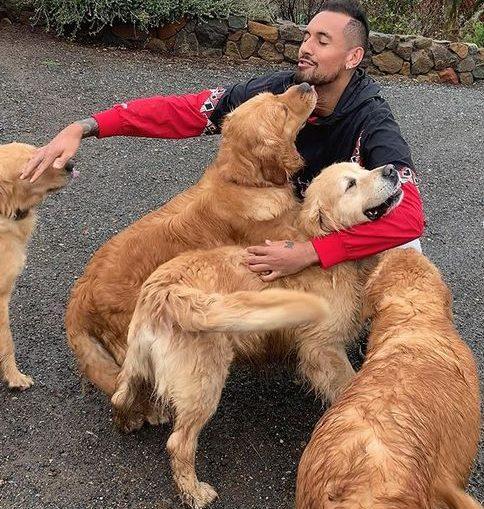 Nick Kyrgios, impreună cu patru dintre golden retrieverii lui