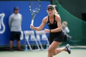 Ana Bogdan tenis tennis wta