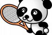 panda tenis urs haios inedit