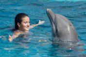lara arruabarrena delfini acapulco mexic