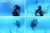acapulco tenis subacvatic delfini mingi