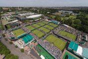 wimbledon terenuri tenis